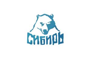 Создание сайта «Это Сибирь!»